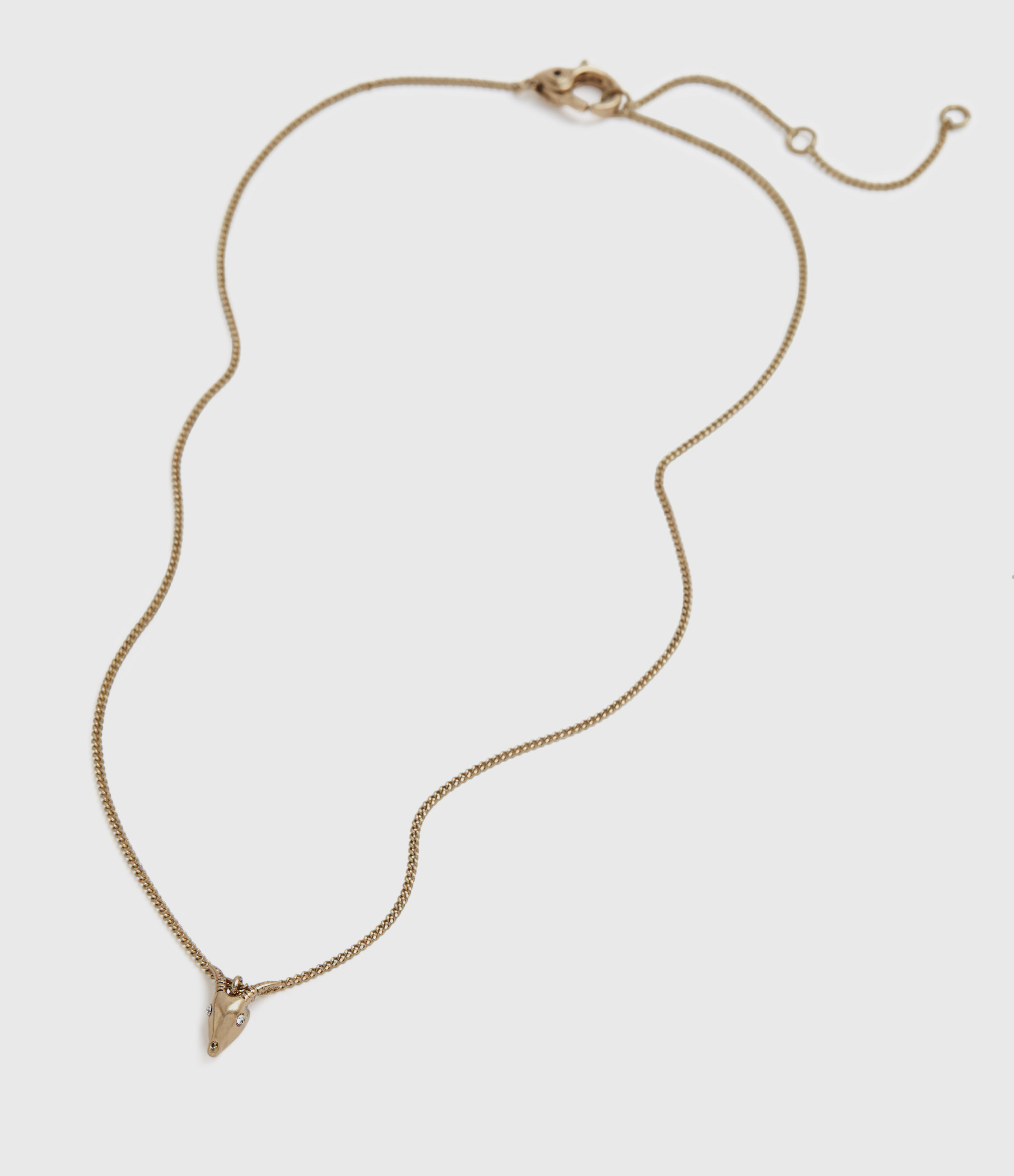AllSaints Women's Brass Mini Ram Necklace, Gold-Tone