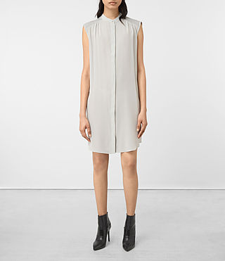 Mujer Sirius Silk Dress (STORM GREY) - product_image_alt_text_1