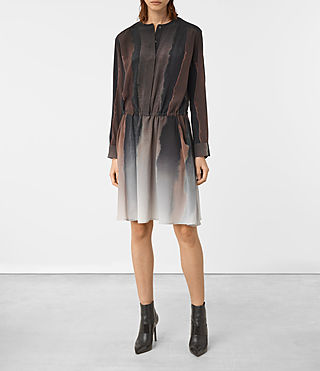 Womens Leevia Cosmos Silk Dress (Brown)