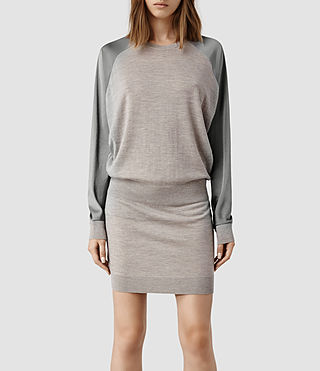 Womens Agi Knit Dress (Cement Marl/Silver)