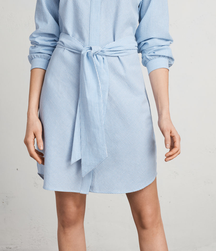 Women's Camille Shirt Dress (BLUE/CHALK STRIPE) - Image 9