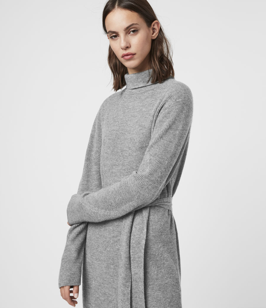 Womens Roza Cashmere Blend Jumper Dress (pale_grey) - Image 2